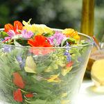 Wildkräutersalat mit essbaren Blüten