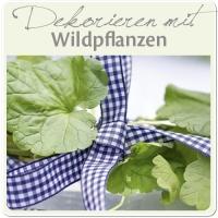 Das Wildpflanzenbuch