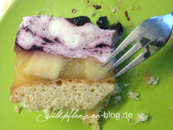Holerbeertorte Wildpflanze