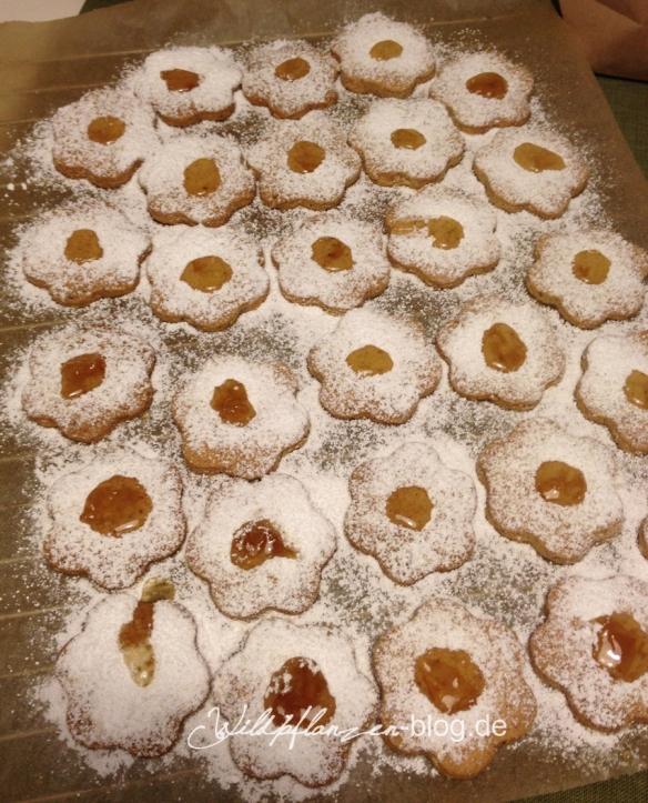 Holerblüten-Kekse
