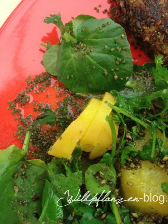 Wildpflanzen-Salat