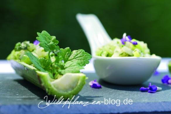 Gurkensalat mit Gundermannblüten